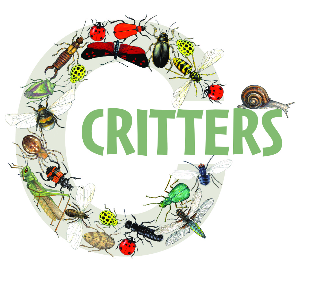 Illustrated letter C critter