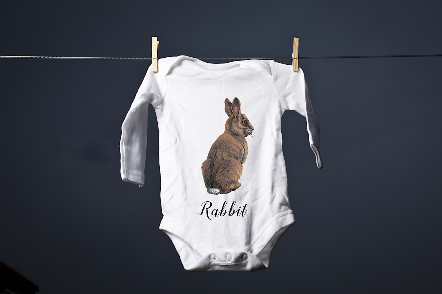 Rabbit Baby Grow shutterstock 277541312