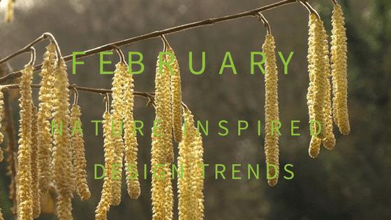 February Blog Header
