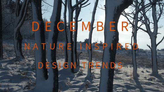 December Blog Header